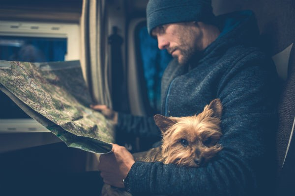 Check with your motorhome supplier about their pet policy before bringing along your furry friend.