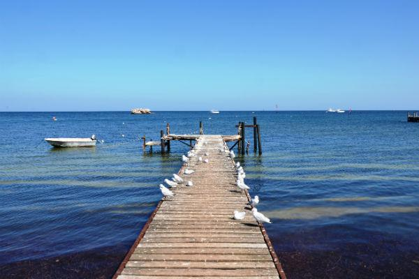 Getting out on the water during your time in Geraldton is a must.