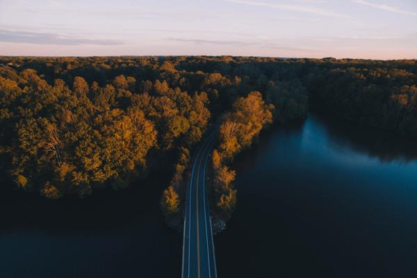 The open road disappears into a forest in Greensboro, North Carolina