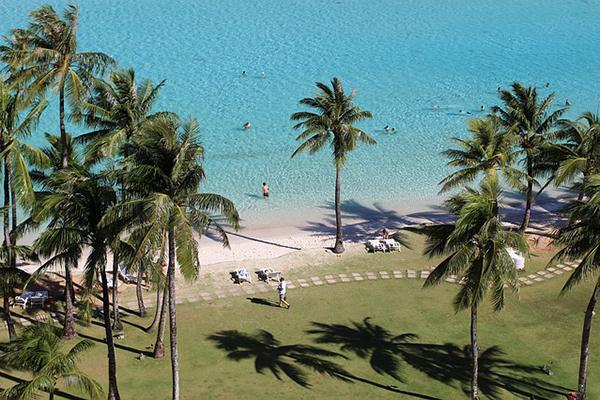 Palm trees line the shore of a turquoise sea in Guam, Micronesia