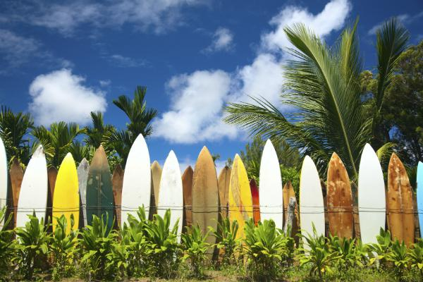 Surf and sun in Hawaii