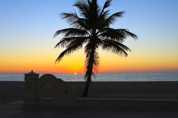 The sun disappears behind the palm trees on a beach in Hollywood, Florida