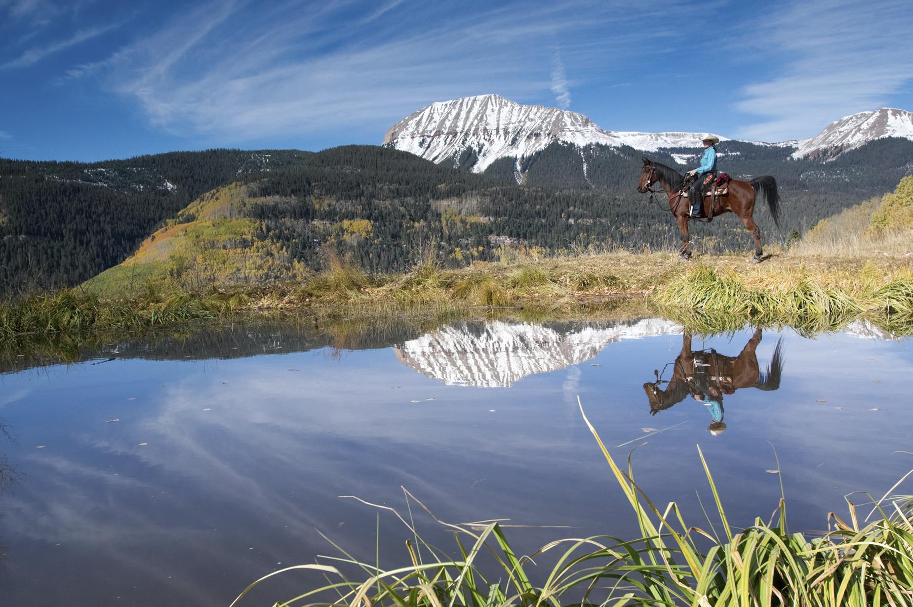 Denver horse trek