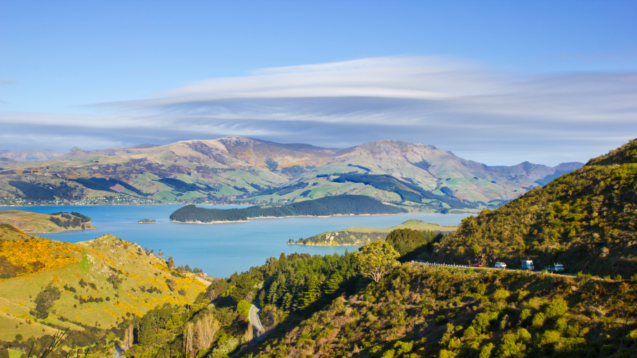 Christchurch rental