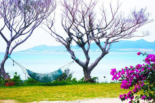 Bright flowers and a hammock tied between two seaside trees in Ishigaki, Japan