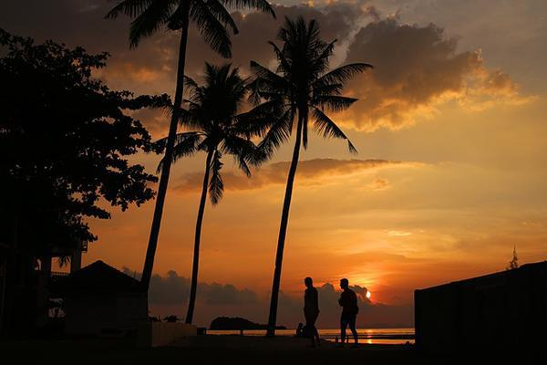 Silhouetted palm trees reach upwards as the sunset paints the sky orange in Ko Lanta, Krabi, Thailand