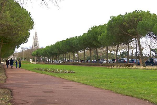 A group of people walk along a tree-lined pathway at a park in La Rochelle, France