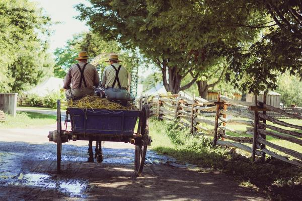 Two Amish men right a horse-drawn carriage near Lancaster, Pennsylvania