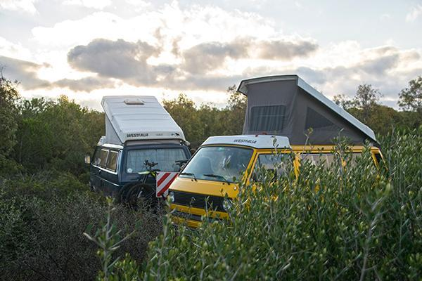 Two little campervans sit with tops up in the middle of a bushy area