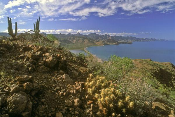 Nature lovers will find a veritable paradise in and around the small town of Loreto.