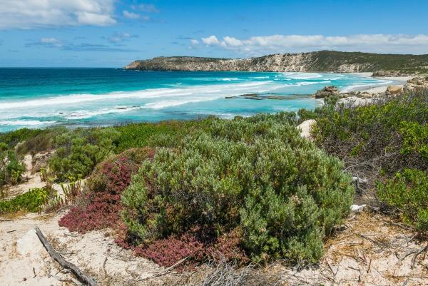 South Australia beach
