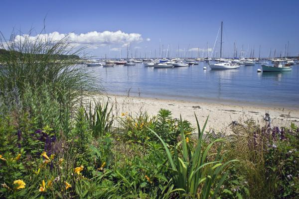 Boats fill the bays and harbours of Martha's Vineyard
