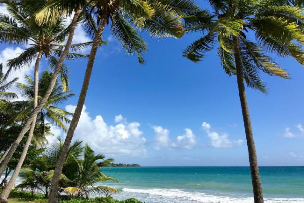 Martinique is a rugged Caribbean island that's part of the Lesser Antilles.
