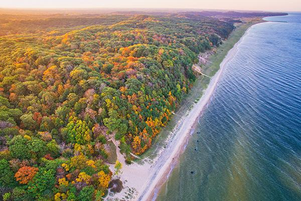 An aerial view of Lake Michigan meeting a forest near Flint in autumn