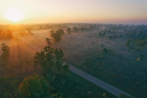 A road cuts through a fog-covered forest at sunset near Flint, Michigan