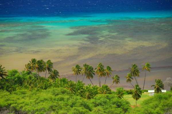 Explore the paradise in Molokai.