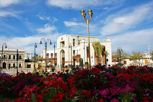 Brightly coloured flowers in front of Plaza Bicentenario in Hermosillo, Mexico