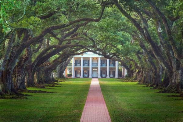 For a glimpse into New Orleans' past, make sure you visit the Oak Alley Plantation.