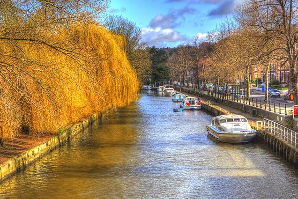 Autumn trees drape over a canal on a crisp fall day in Norwich, United Kingdom