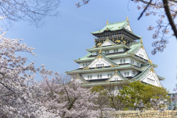 Osaka Castle amongst the cherry blossoms