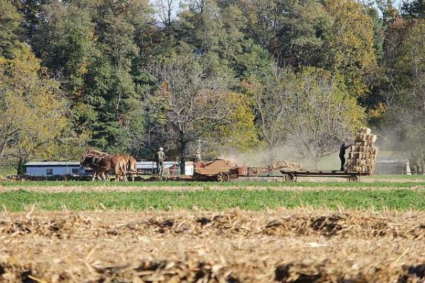 Amish farmers baling hay in rural Lancaster, Pennsylvania
