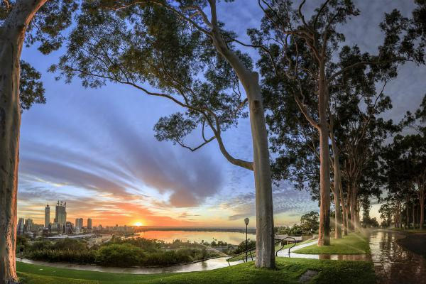 Those planning to visit Western Australia will almost certainly spend some time in and around Perth.