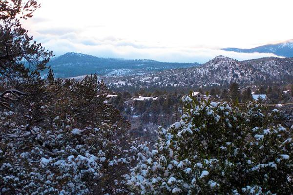 Snow dusts the trees of Prescott National Forest in Prescott, Arizona