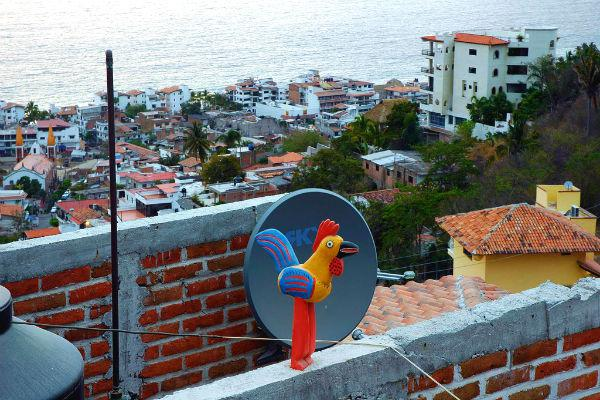 You never know what surprises you'll find in the amazing city of Puerto Vallarta.