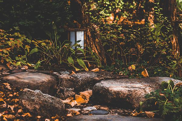 A lantern sits amongst a lush wooded area in the Japanese Gardens in Rockford, Illinois