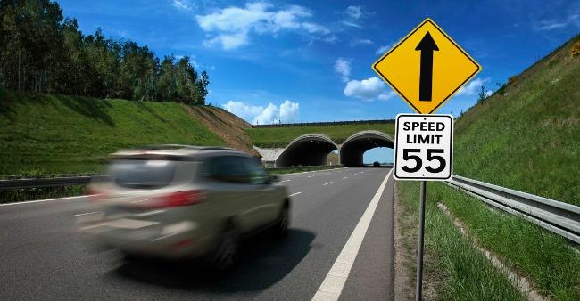 USA speed limit sign
