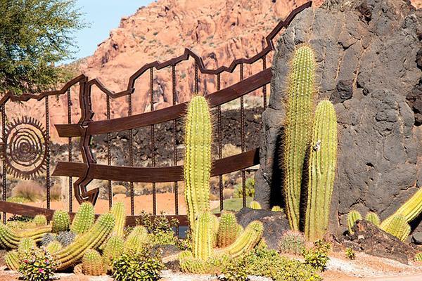 St George Utah Cactus Garden Gate