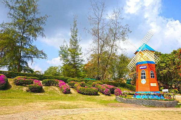 Phu Foi Lom attraction with windmill, flowers and trees in Udon Thani