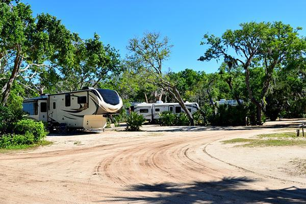 RVs sit in a tree-filled campground in the USA