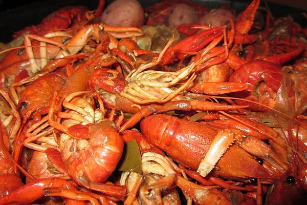 Boiled crawfish in New Orleans, Louisiana