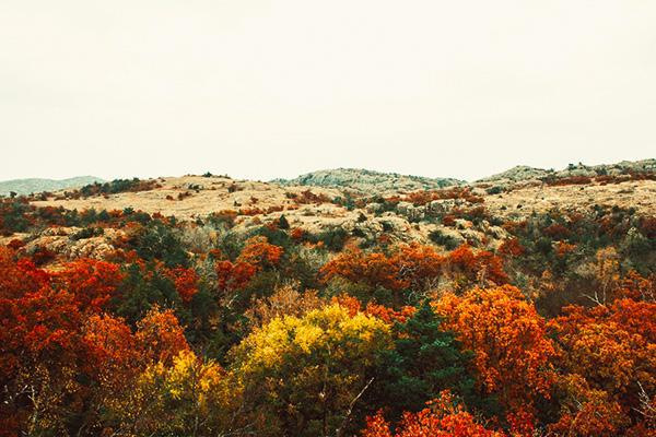 Fall colours in Wichita Mountains National Wildlife Refuge, Texas